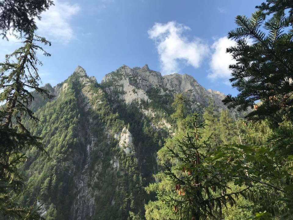 Valea Alba