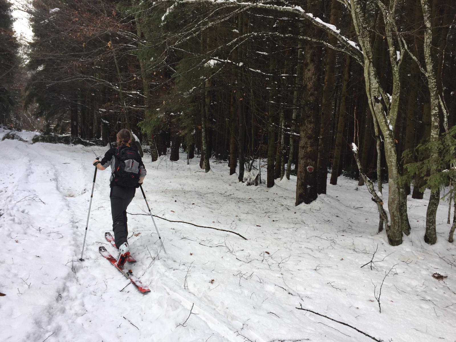 Urcare lateral partia de schi