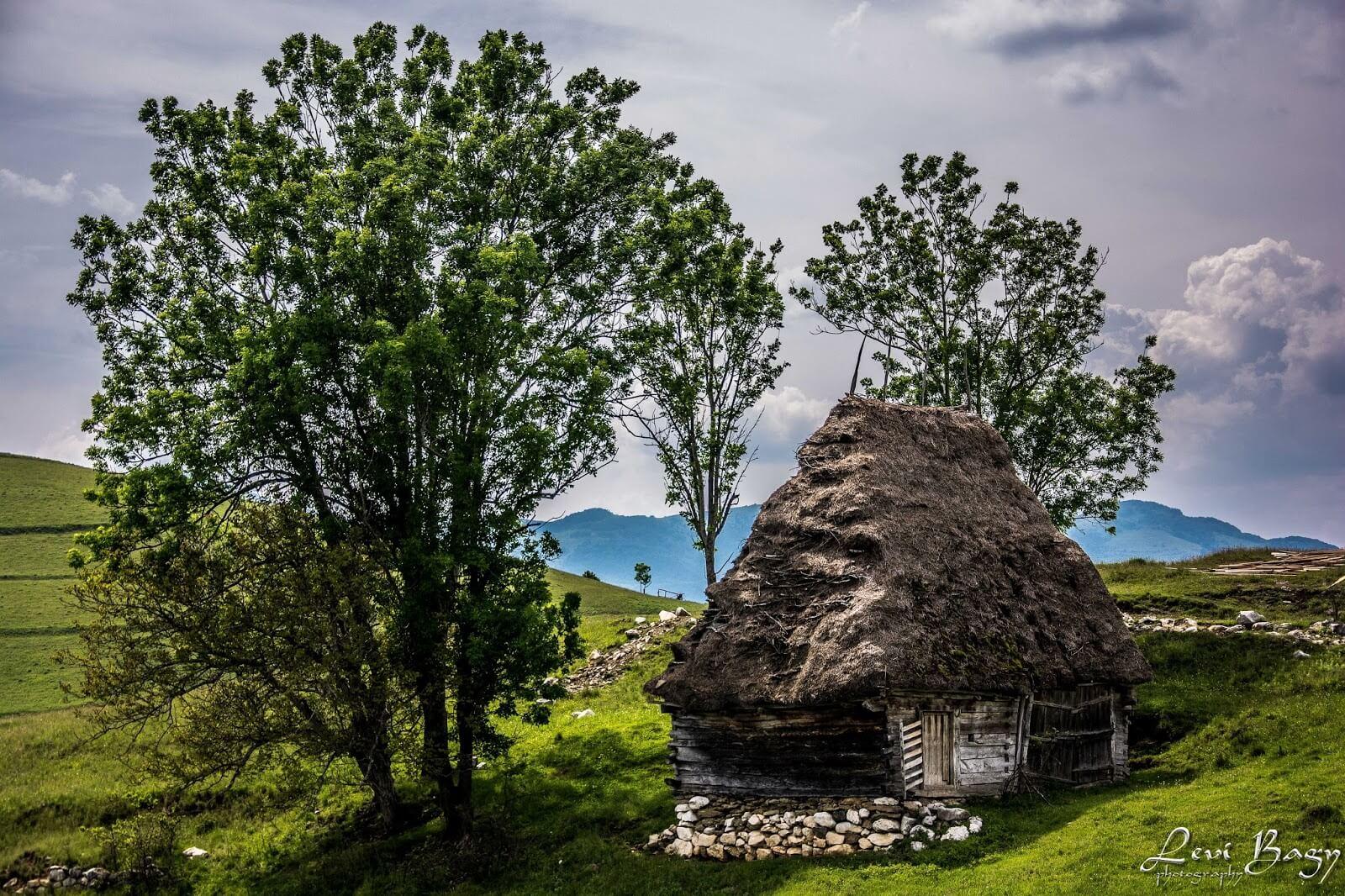 Dumești -Levi Bagy Photography