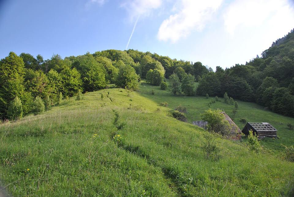 Grajduri sub Scarita - Belioara - cezarpart.blogspot
