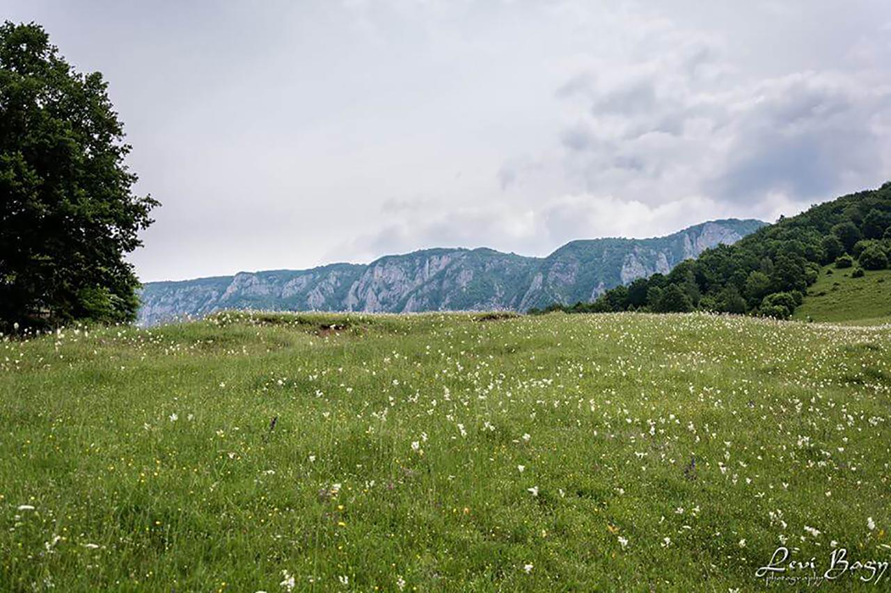 Deasupra satului Salciua spre Bedeleu - Levi Bagy Photography