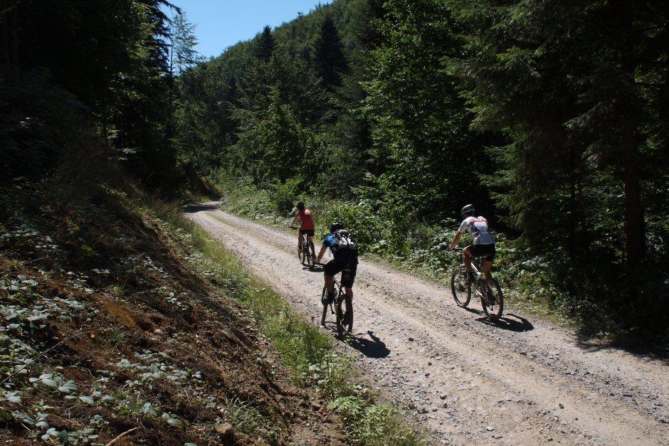 2MB img 25-Urcare-spre-Berzevita-pe-Valea-Barzavei