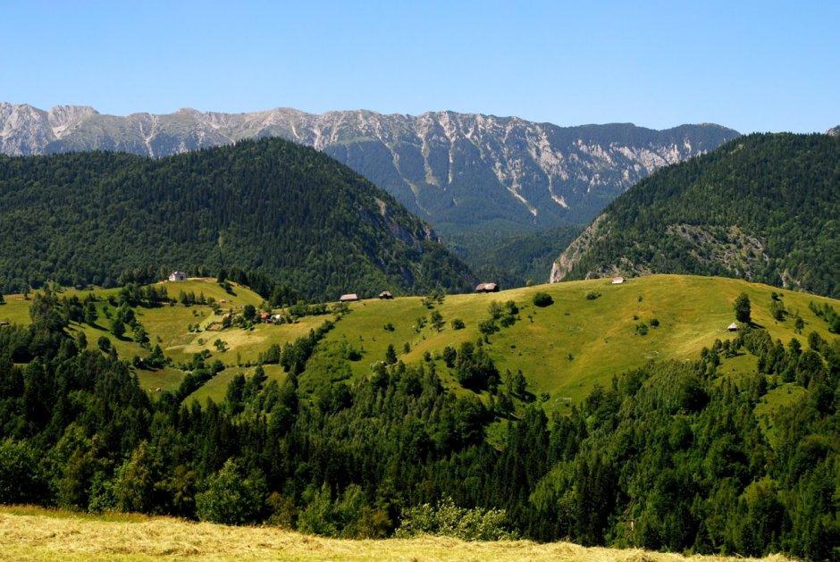 3MB Din-satul-Pestera-spre-Prapastiile-Zarnestilor-si-Piatra-Craiului-33