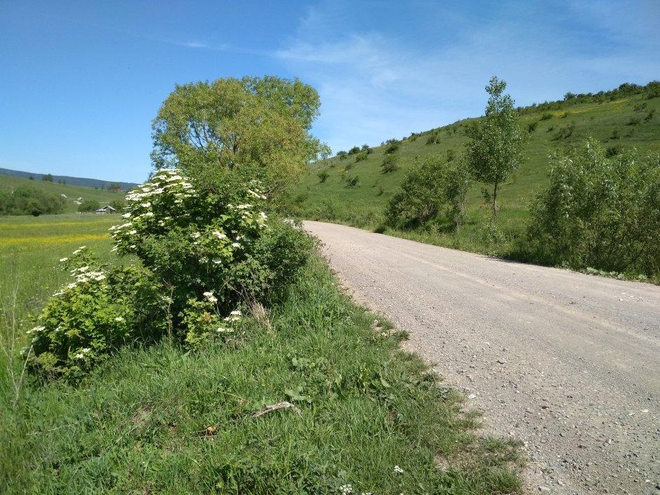 21mn img 11pg drumul de iesire din satul danesti