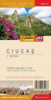 ciucas mn04 2nd cover 2019 08 14 a 0