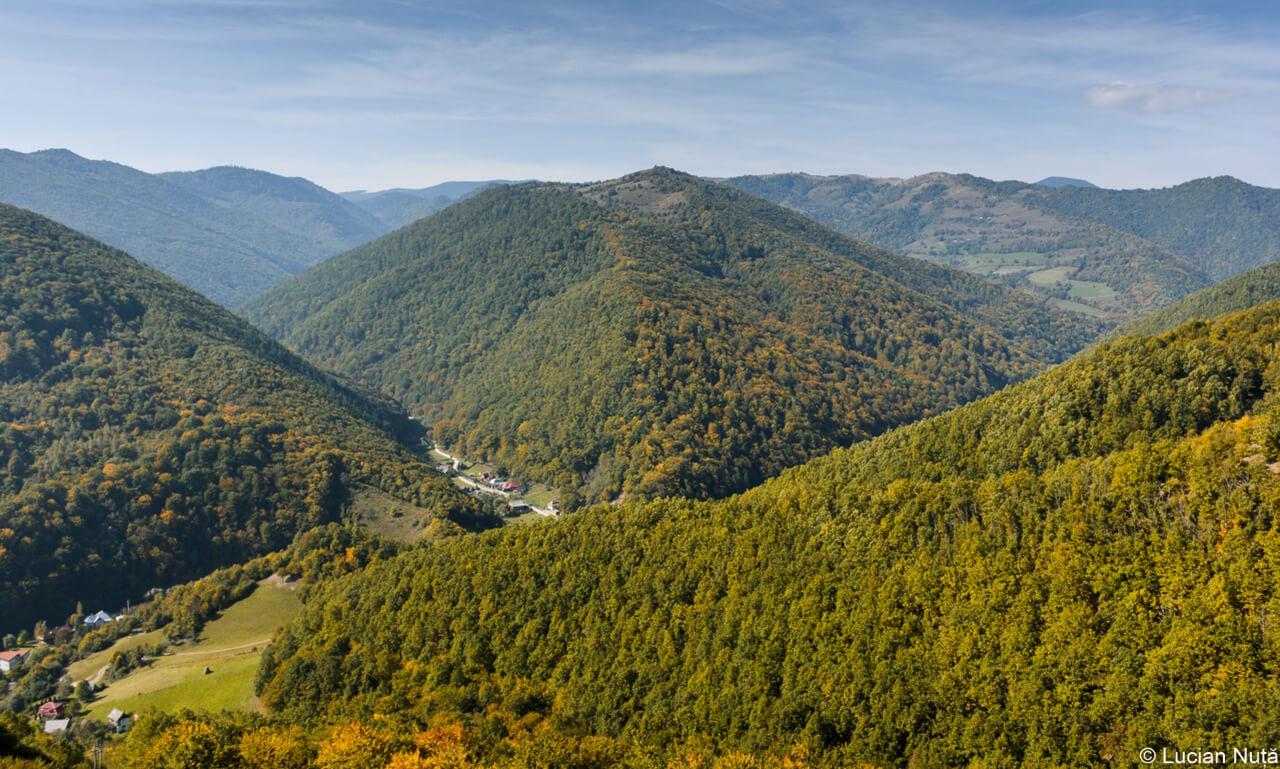 Valea ierii - Lucian Nuta - ClujCom